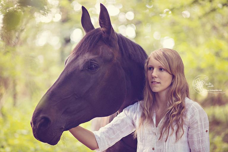 Pferdefotos Osnabrück Portrait Pferd (3)